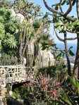 The exotic garden of Monaco