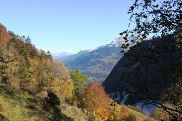 Swiss alps in autumn costume