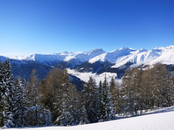 Davos Jakobshorn snowboard paradise