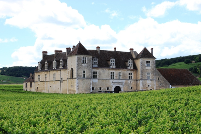 Castle with vineyards